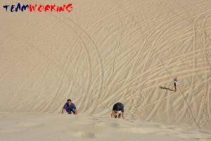 desert survival: team building & incentive in uae